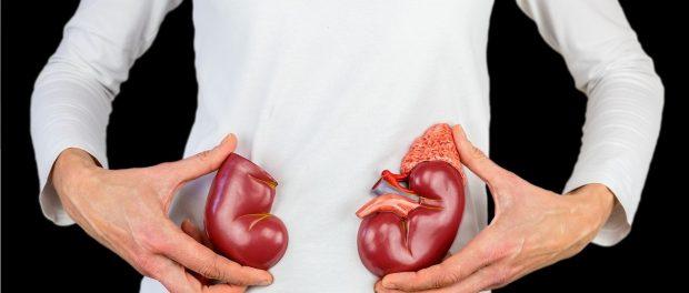Dieta para las personas con insuficiencia renal - Recetas saludables